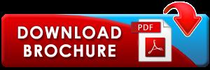 btn_download_pdf